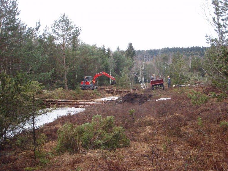 Grossansicht in neuem Fenster: Einbau Holzgerüste für Dämme